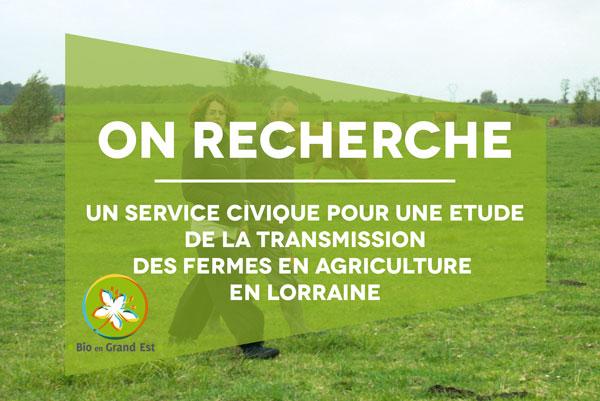 Recrutement : Service civique «Étude de la transmission des fermes en agriculture en Lorraine »