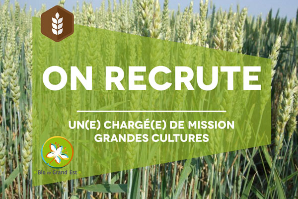 Recrutement : Chargé(e) de mission grandes cultures