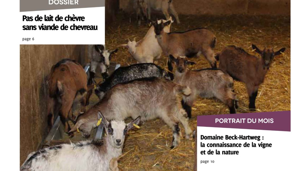 Lettres AB n°24 – déc. 2019