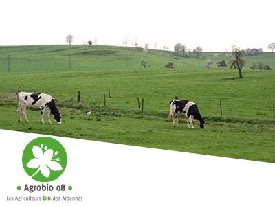 Assemblée Générale 2020 d'Agrobio 08