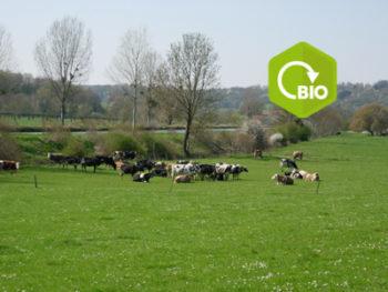 Aides bio : un nouveau coup de frein sur la filière en Grand Est