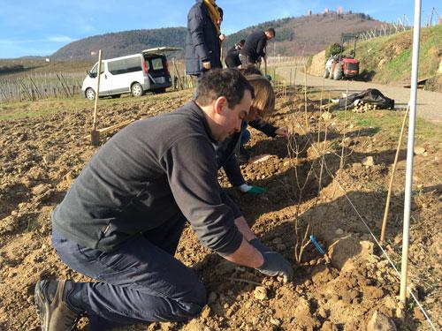 AB et biodiversité : un projet pour favoriser l'essaimage des initiatives