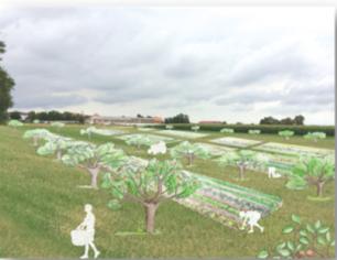 Appel à manifestation d'intérêt: La ferme Saint-André cherche ses futurs fermiers
