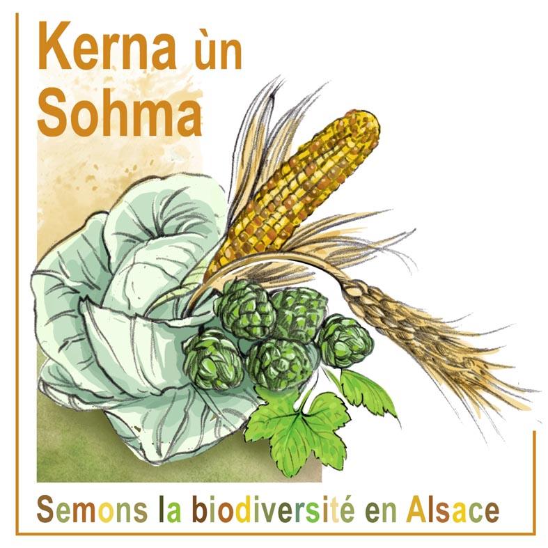 logo_Kerna_banderole_10x10