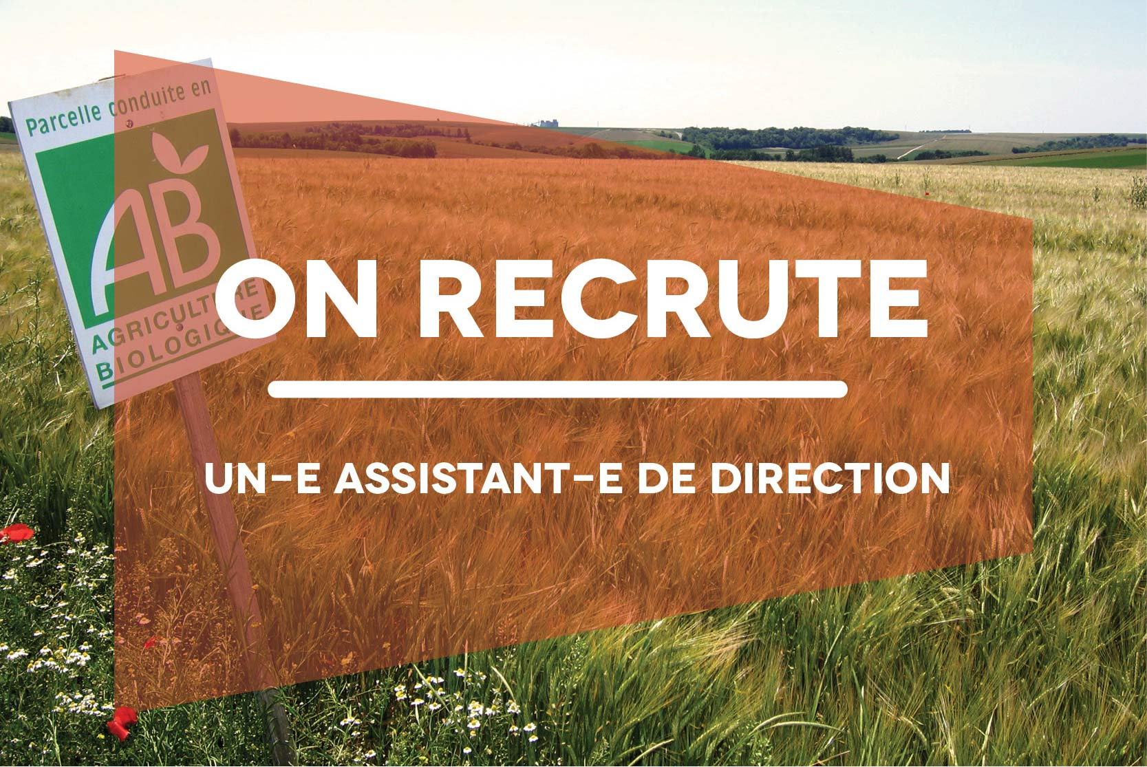 recrut_assist