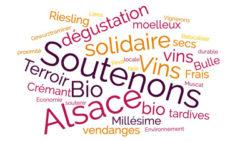 Soutenons les Vignerons Bio d'Alsace