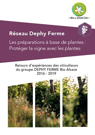 Les Plantes pour soigner la vigne