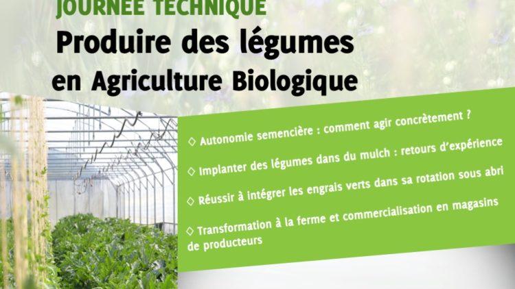 Produire des Légumes en Agriculture Biologique