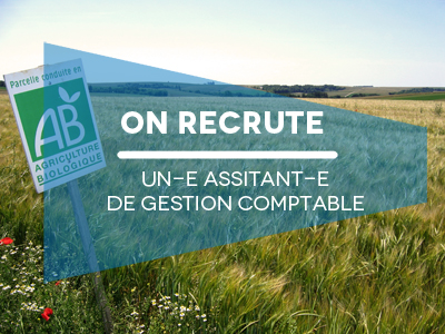 RECRUT_assis_gestion_comptable