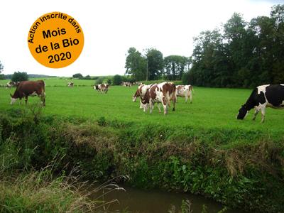 Production laitière, un nouvel équilibre grâce au bio