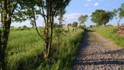 Favoriser la biodiversité dans les fermes Bio, le projet Trame Verte et Bleue du Longeau continue !