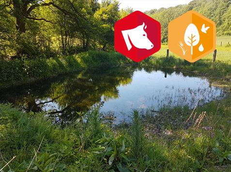 Formation : Comment s'adapter aux aléas climatiques et favoriser la biodiversité pour alimenter son troupeau