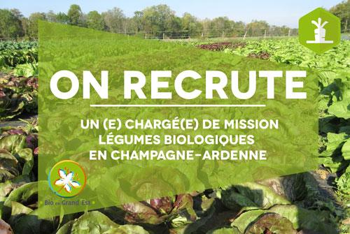 Recrutement : Chargé(e) de mission Légumes Biologiques