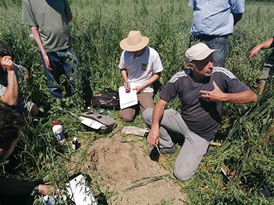 Formation : «Utiliser les plantes bio-indicatrices pour connaître son sol, adapter ses pratiques et mieux gérer les adventices»