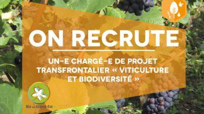 Recrutement : Chargé(e) de projet transfrontalier «viticulture et biodiversité»