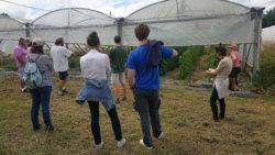 Retour sur la visite d'un laboratoire de transformation de légumes bio