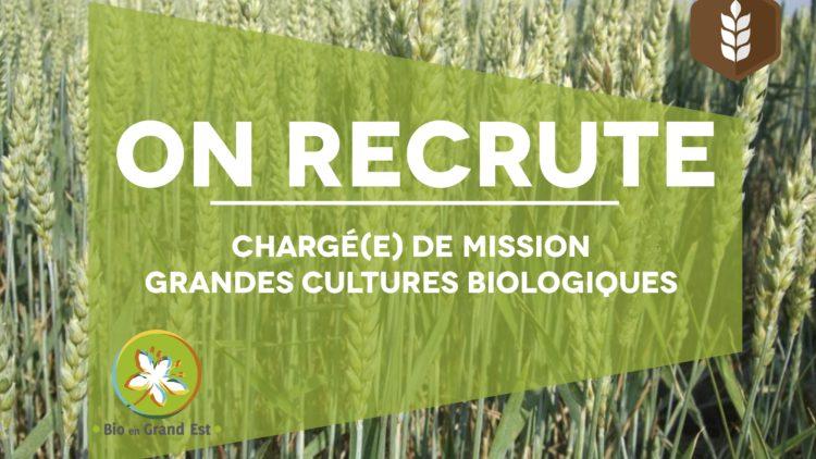 Recrutement : chargé-e de mission grandes cultures biologiques